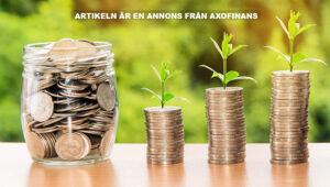 Axofinans kan privatekonomi. Foto: Nattanan Kanchanaprat. Licens: Pixabay.com